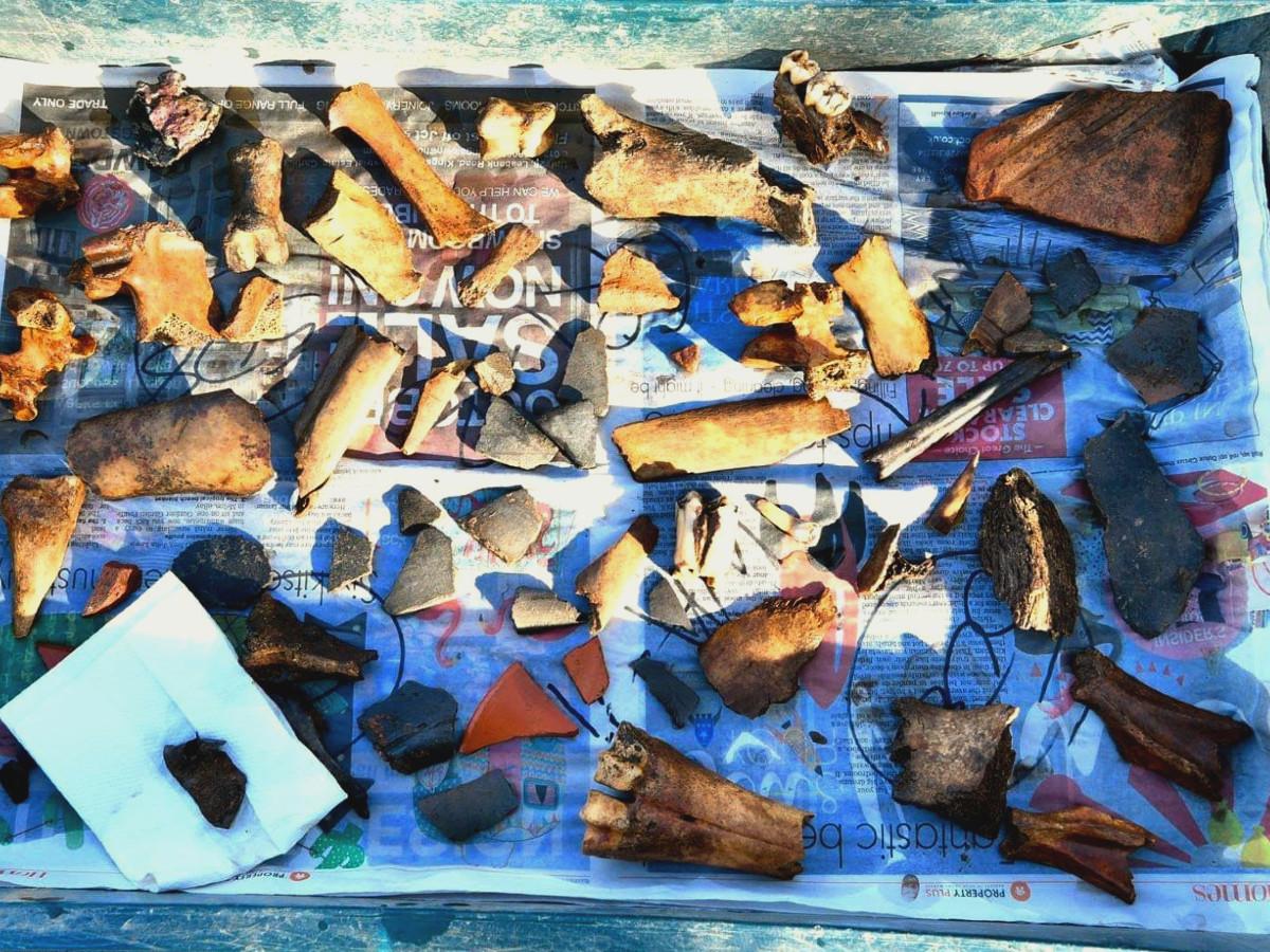 Find Tray   Carlisle Roman Bathhouse Dig